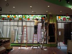 Commercial Storefront Installation